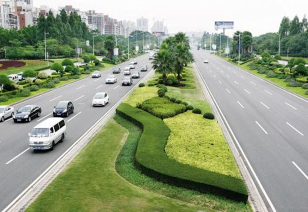 城市道路绿化