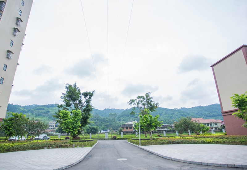小区绿化工程